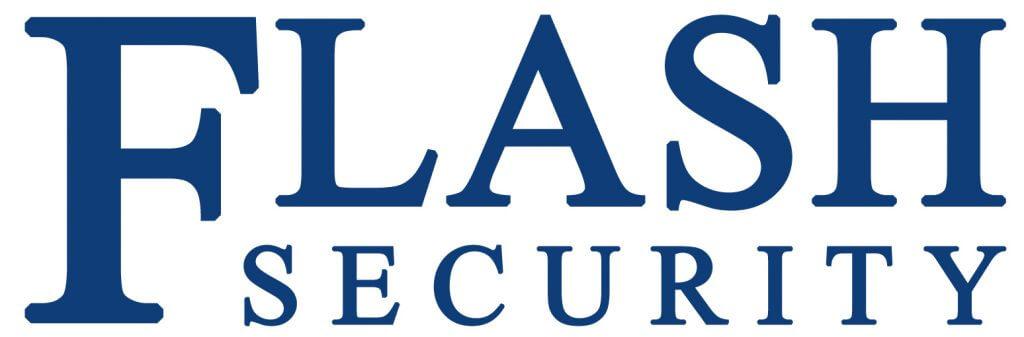 Flash security logo